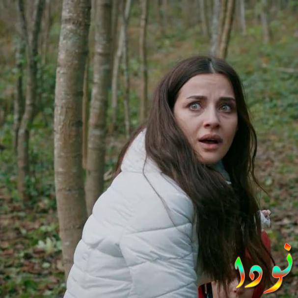 صورة من مسلسل أشرح ابها البحر الأسود