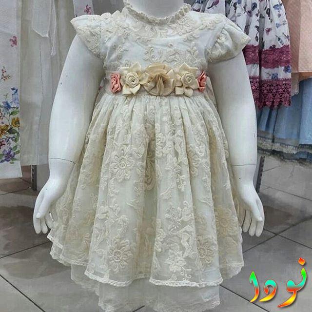 فستان من الدانتيل الأبيض