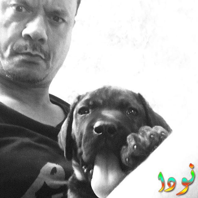 صورة أبيض وأسود لعباس ابو الحسن و كلبه