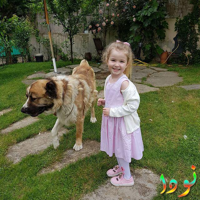 إبرار عليا ديميربيلك مع كلبها
