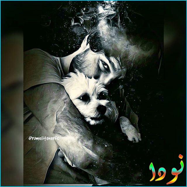 صورة جميلة لتانر مع كلبه