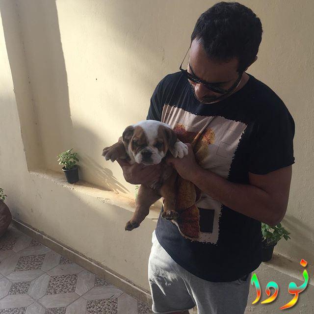 أحمد فهمي وكلبه