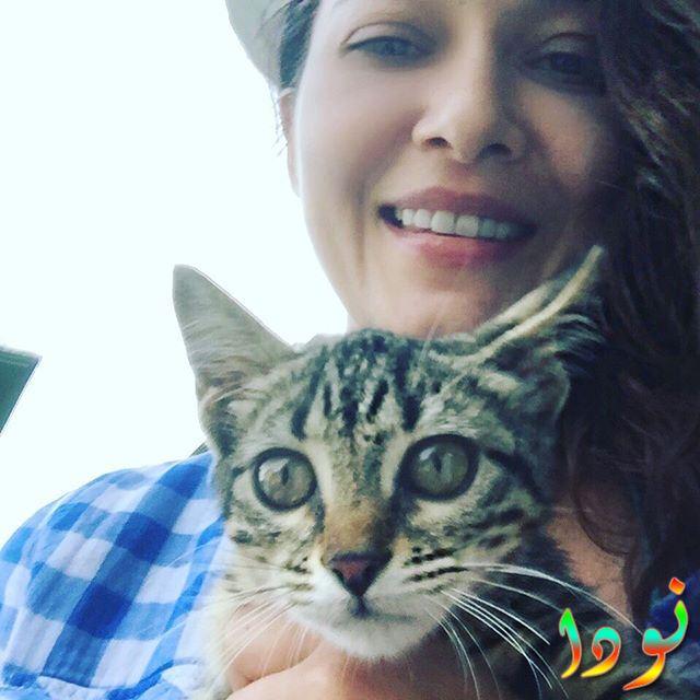 نورغول يشيلتشاي وقطتها
