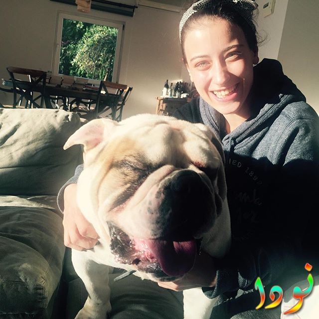 هازال كايا مع أحدى كلابها
