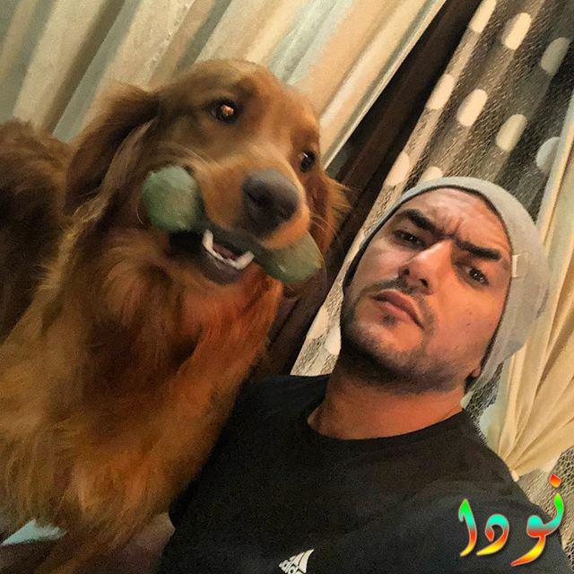 أحمد العوضي وكلبه