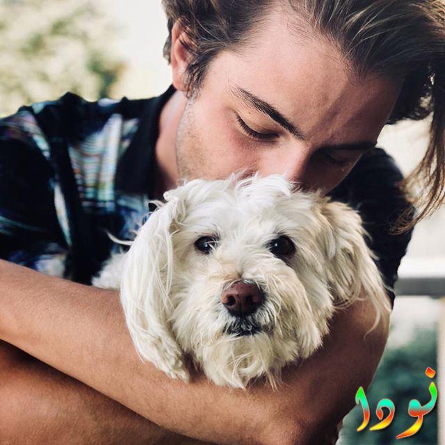 بوران كوزوم وكلبه