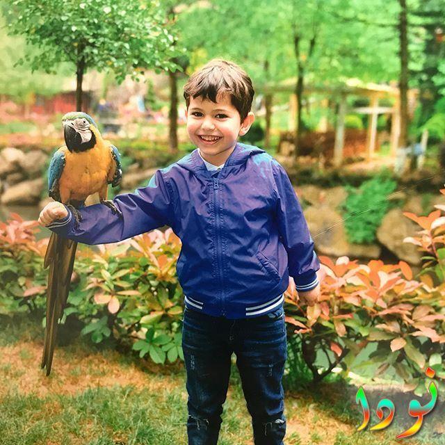 الممثل الطفل جان بطل مسلسل جولبيري