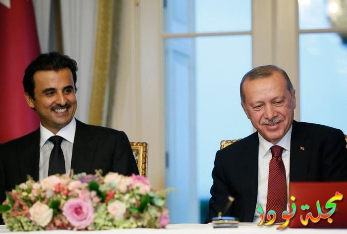 رجب طيب اردوغان مع الرئيس القطري