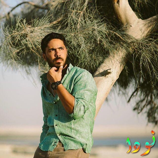 Baher El Newehy