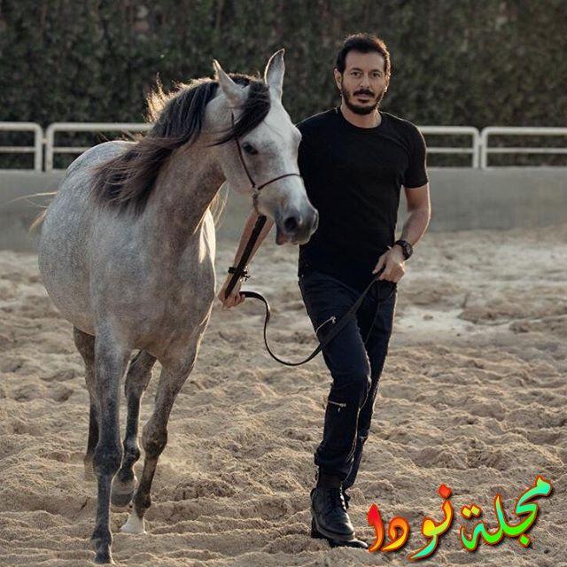 عاشق للحصنة
