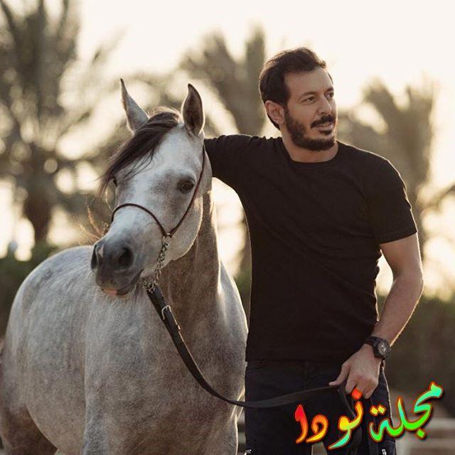 ملك السعادة في الدراما المصريه