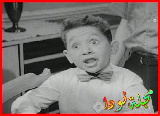 أحمد فرحات معلومات و صور وتقرير كامل
