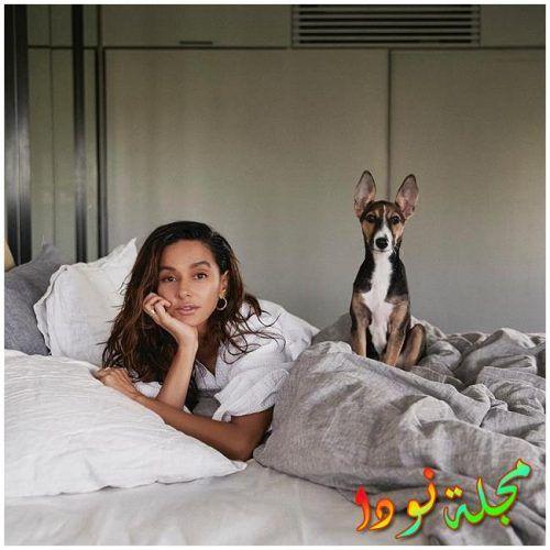 شيباني دانديكار وكلبها